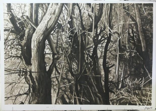 Meuschemen, fauchage tardif, 2010, Chinatusche auf Papier, 122 x 172 cm