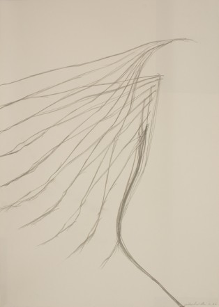 Untitled, 1976, Pencil on cardboard, 90 x 62,5 cm